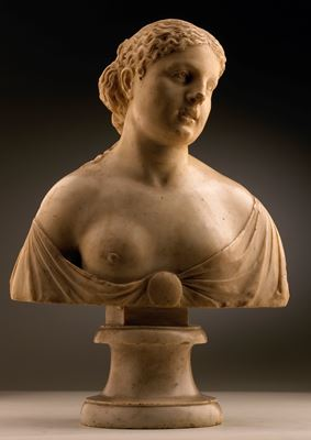 Bust of a Classical Heroine